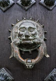 Battitore di porta animale su una porta di legno della porta rustica Fotografie Stock Libere da Diritti