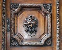 Battitore su una vecchia porta di legno immagini stock