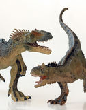 A Battle Between a Carnotaurus and an Allosaurus Stock Image