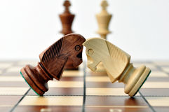 Battle of chess jumpers Royalty Free Stock Photography