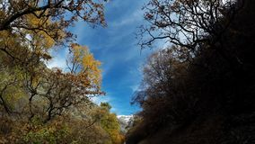 Battle Creek Canyon Trail Hike Pt 1. A timelapse hike of Battle Creek Canyon Trail in Autumn. Utah, USA stock video