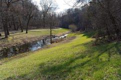 Battle Creek och slinga till och med trän Arkivfoto