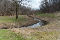 Battle Creek slinga och skog Royaltyfri Bild