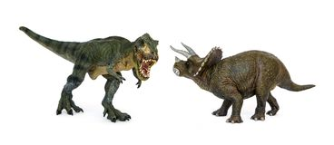 Dinosaur Tyrannosaurus and Triceratops. Battle of dinosaurs of Cretaceous. Shooting Hunt and Roaring of TyrannosaurusT-rex With threat and self defense of Stock Image