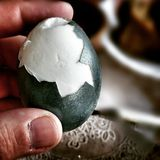Battle of eggs Stock Photos