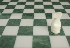 Battle is ended - chess horse alone Stock Photography
