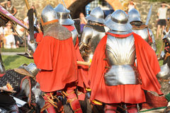 Battle knights Royalty Free Stock Photos