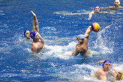 Battle in match on water polo Royalty Free Stock Photo