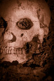 Battle Skull. Bloodshed With A Human Skull Layed Slayed In The Battle Royalty Free Stock Photo
