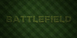 BATTLEFIELD - fresh Grass letters with flowers and dandelions - 3D rendered royalty free stock image stock photo