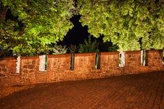 Battlement και δέντρα τοίχων του Castle τη νύχτα Στοκ Εικόνες