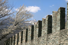 Battlements in Fenis castle Royalty Free Stock Photos