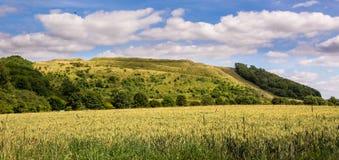 Battlesbury-Hügel in Wiltshire Lizenzfreie Stockbilder