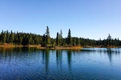 Strathcona Provincial Park: Forbidden Plateau ~ Paradise Meadows Royalty Free Stock Photos