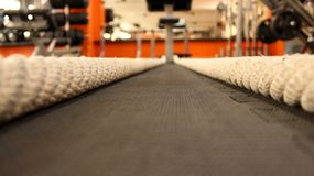Battling ropes at gym. stock photography