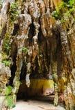 batu выдалбливает Куала Лумпур Малайзию Стоковые Изображения RF
