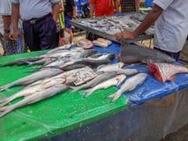 Batu выдалбливает Selangor Малайзию стоковые изображения
