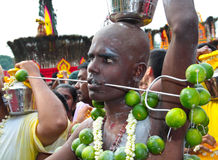 Batu Cave thaipusam 2011 series. BATU CAVE, MALAYSIA - January 20 : Close up of a hindu devotee with pierced mouth and dangling lime burdens during Thaipusam at Royalty Free Stock Photo