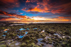 Batu Luang Kuala Penyu fire sky sunset. This beach batu luang have a lot of stone with green moses royalty free stock photo