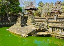 batuan tempel Royaltyfria Foton