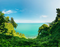 Batumi, Adjara Georgia. Beautiful Scenic Summer View From Botanical Garden Royalty Free Stock Photos