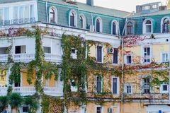 General architecture - facade of traditional residential building, covered with ivy and grape varnish. Exterior of beautiful and cozy house. Vintage building royalty free stock images