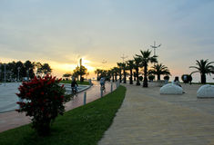 BATUMI, GEORGIA MAY 29, 2015. Bicycle path and green palms Royalty Free Stock Photos