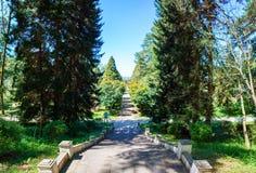 Batumi Gruzja, Kwiecień, - 26, 2017: Giorgi Gabrichidze nadmorski park Panoramiczny widok Mtsvane Kontskhi Batumi (Zielony przylą Obraz Stock