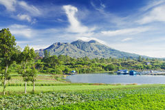 Batur volcano Royalty Free Stock Photos