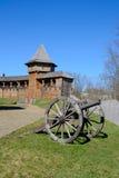 Baturin fästning Arkivbild