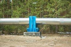 Bau der Rohrleitung entlang dem Koniferenwald lizenzfreies stockbild