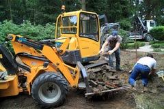 Bau des Gartens Stockfoto