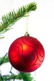 Bauble рождества Стоковые Фото