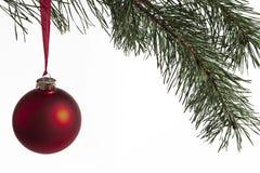 bauble bożych narodzeń jedlinowy drzewo Fotografia Royalty Free