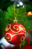 Bauble on Christmas tree Stock Image