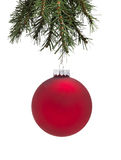 Bauble and Christmas tree Royalty Free Stock Photos