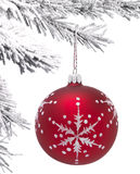 Bauble and Christmas tree Stock Photo