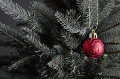 Bauble do Natal na árvore imagem de stock