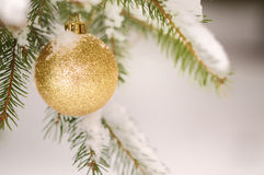 Bauble on snow Royalty Free Stock Images