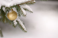 Bauble on snow Royalty Free Stock Image
