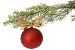 Bauble vermelho do Natal na filial de árvore Fotos de Stock Royalty Free