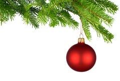 Bauble vermelho do Natal que pendura dos galhos do abeto Fotografia de Stock Royalty Free