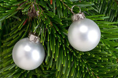 Baubles on a Christmas tree branch Royalty Free Stock Photos