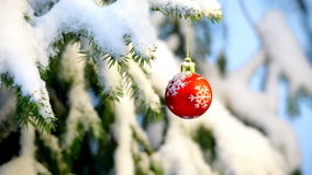 Baubles hanging on a christmas tree Stock Images