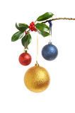 Baubles and Holly. Red, gold and blue glitter Christmas baubles hanging from a Holly branch isolated against white Royalty Free Stock Image
