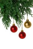 Baubles and juniper Stock Image