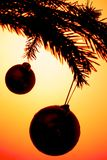 Baubles silhouettes Royalty Free Stock Photo