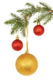 Baubles in tree Royalty Free Stock Photography