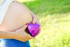 Bauch der schwangeren Frau stockfotos