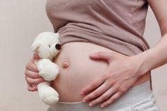 Bauch der schwangeren Frau mit Teddybären Lizenzfreies Stockbild